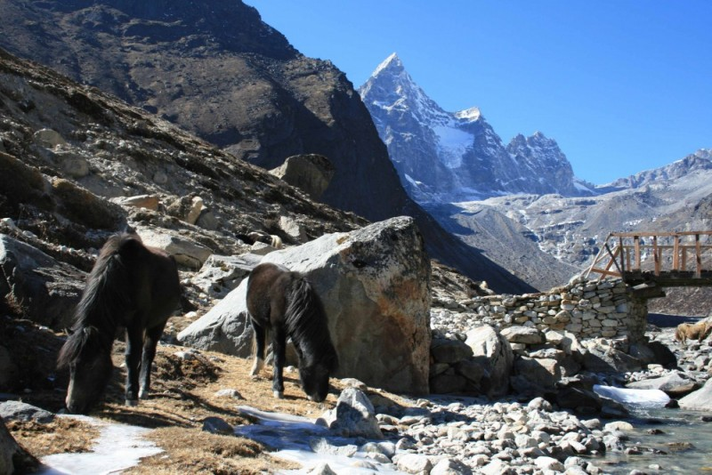 machermo, Gokyo area