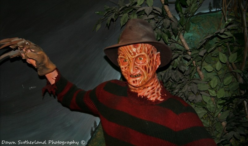 1 2 Freddy S Coming For You Miscellaneous Photos Dawn Sutherland Photography