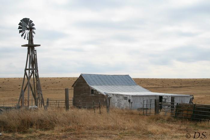 dawn sutherland, farm, colorado