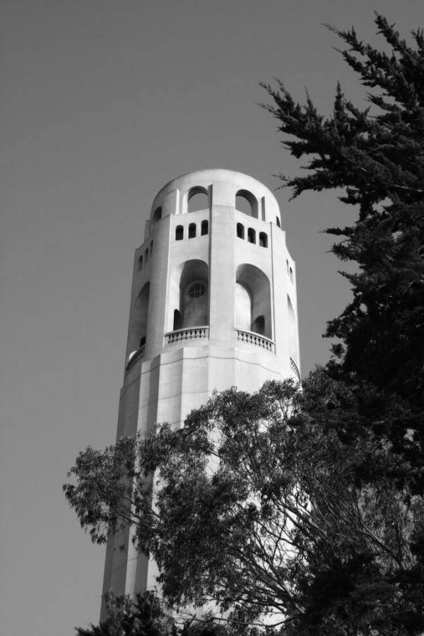 Dawn Sutherland, arizona photography, coit tower