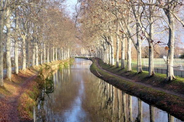canal du midi / hiver
