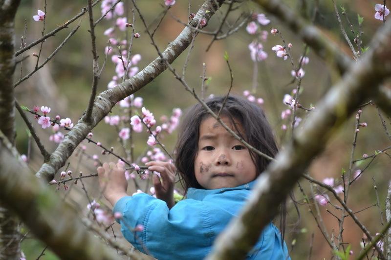 niña subida a un árbol, jugando con flores