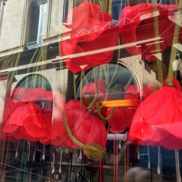 vitrine en  fleur