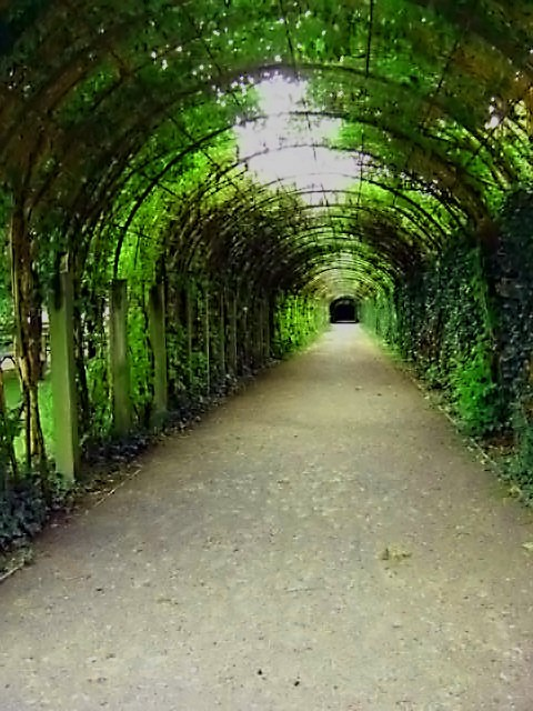 Plant tunnel
