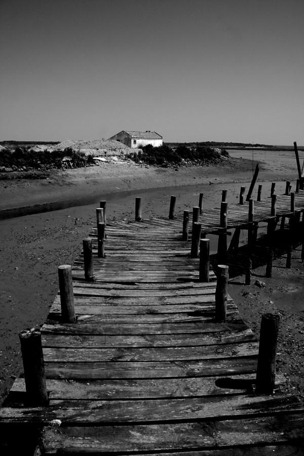 Low Tide I