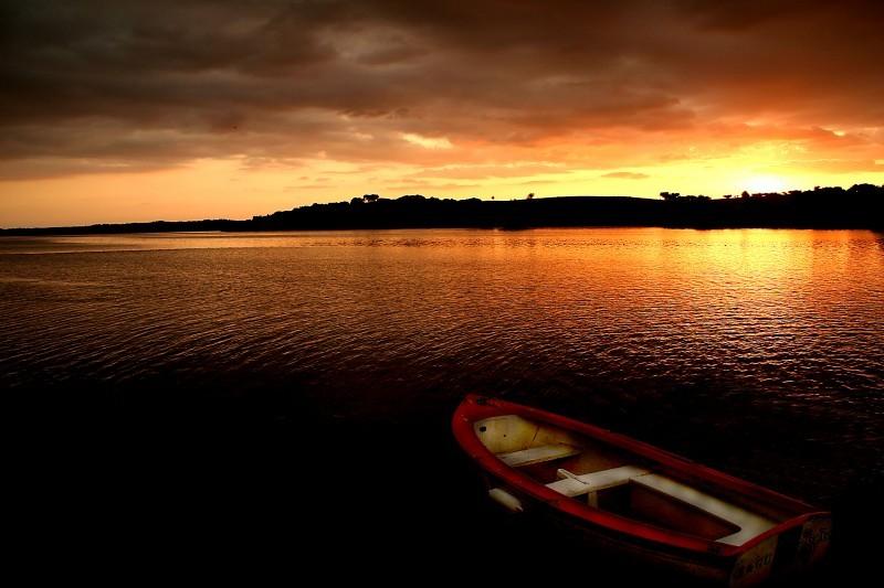 Avis Sunset IV