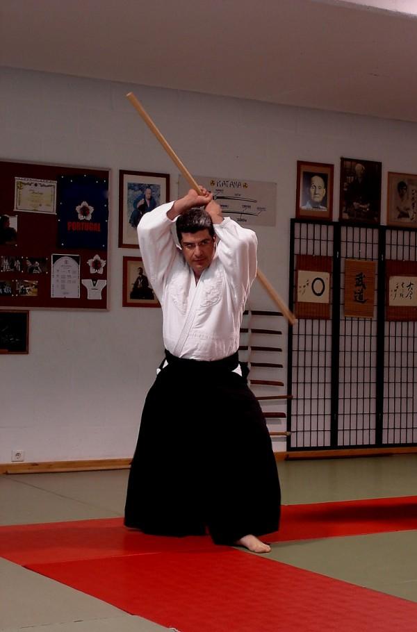 Aikido Jo