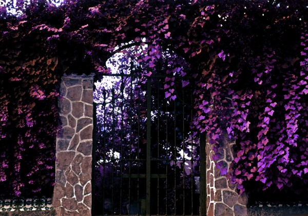 Gate and leaves
