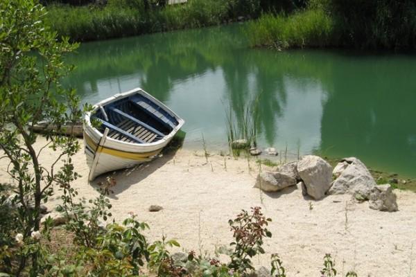 Barca en el lago verde