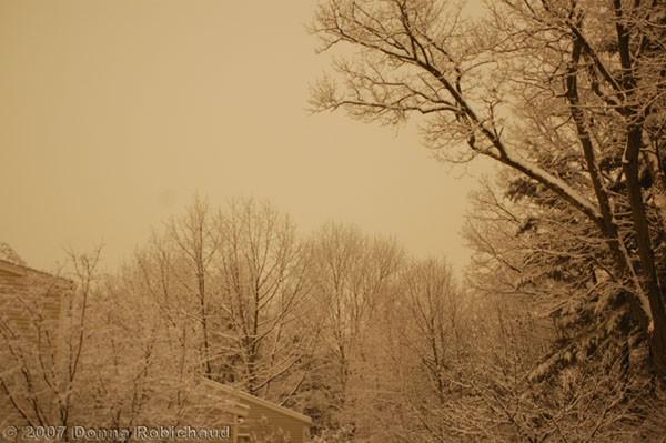 night snowscape