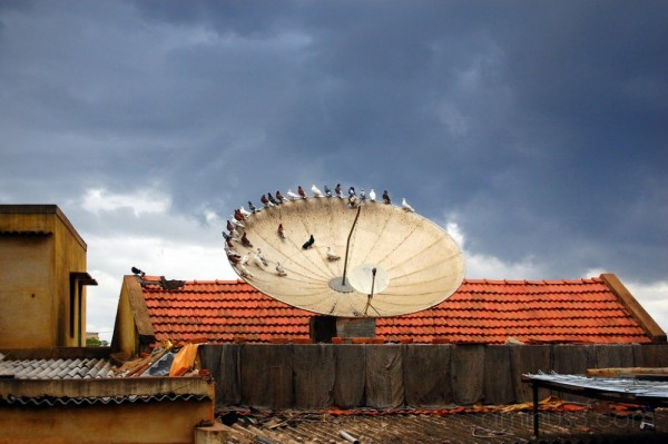 satellite rays
