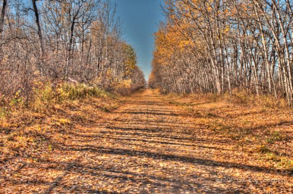 Township Road 574