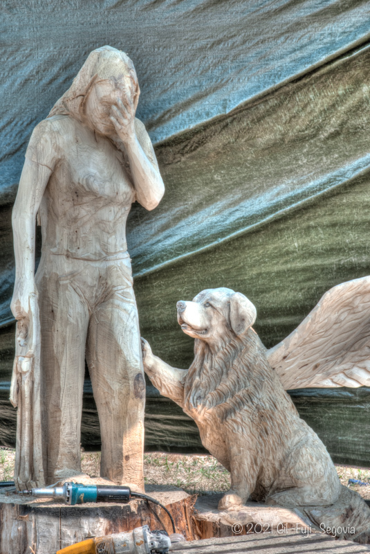Grieving a lost dog