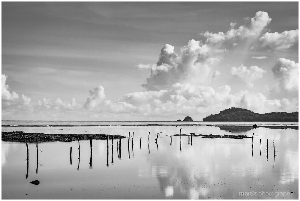 Landscape Echoes