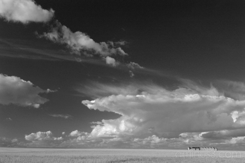 Land of the Living Skies B & W
