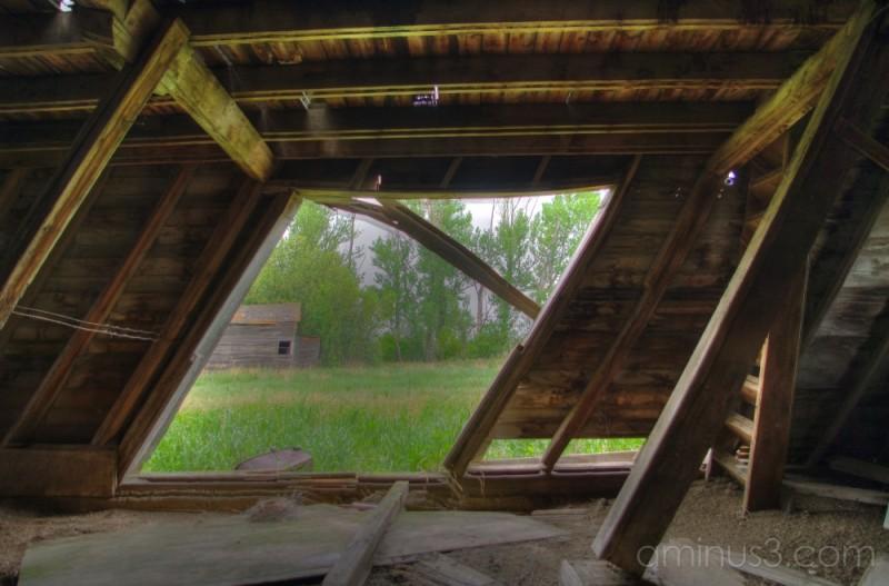 From Inside Hodgeville Barn