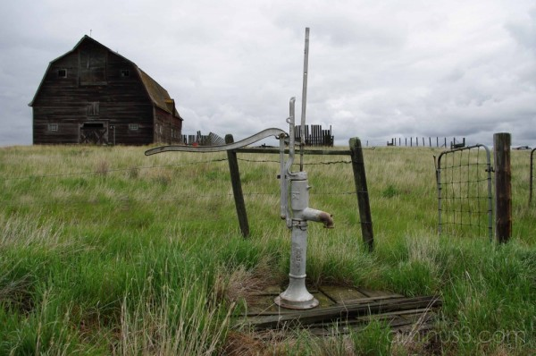 Pump in the Barnyard