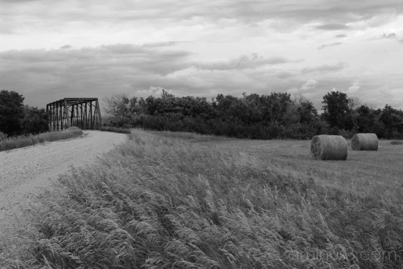 Hay Field at Elmore Bridge B & W