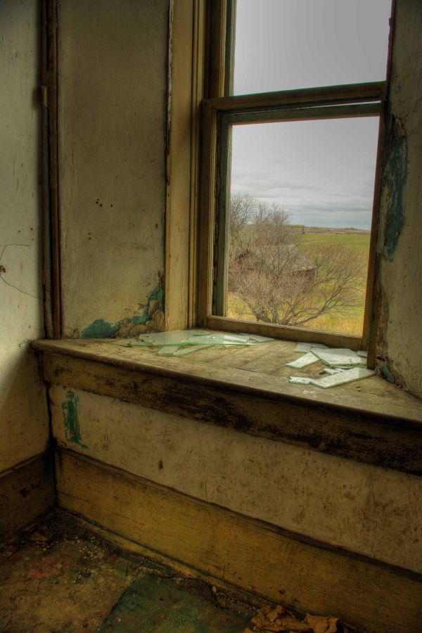 Window with a View and a Seat