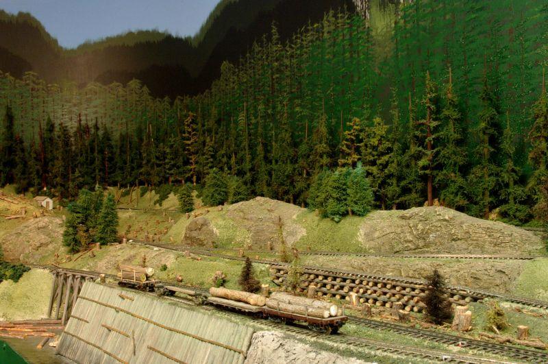 Environmental Friendly Logging?