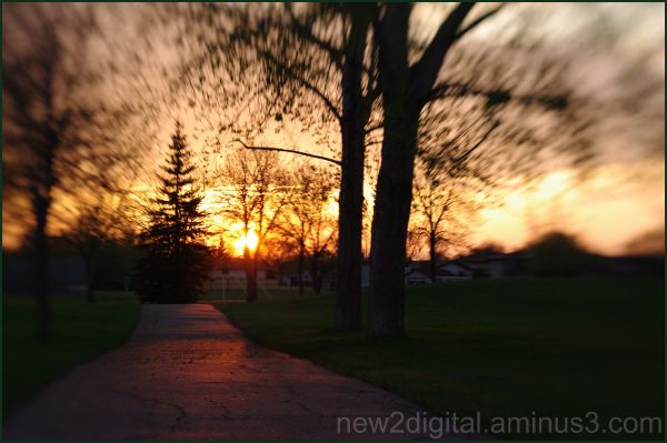 Lensbaby Sunset