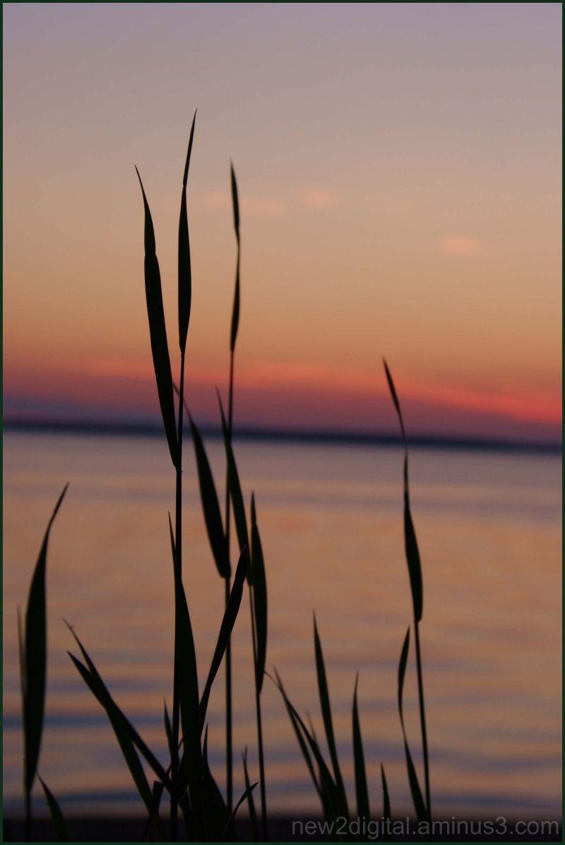 Sunset 4/4