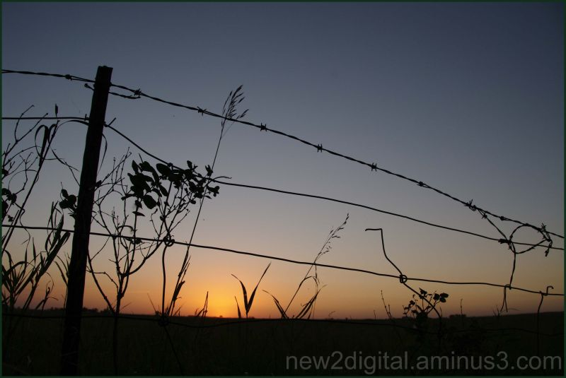 Simply Fence & Sunset