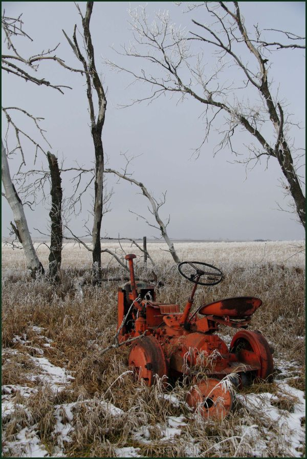 Frosty  Tractor Remains