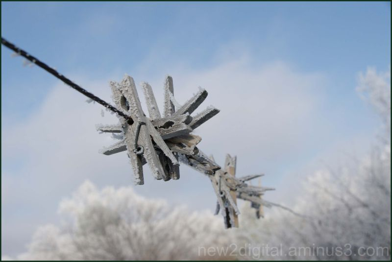 Frosted Clothes Line