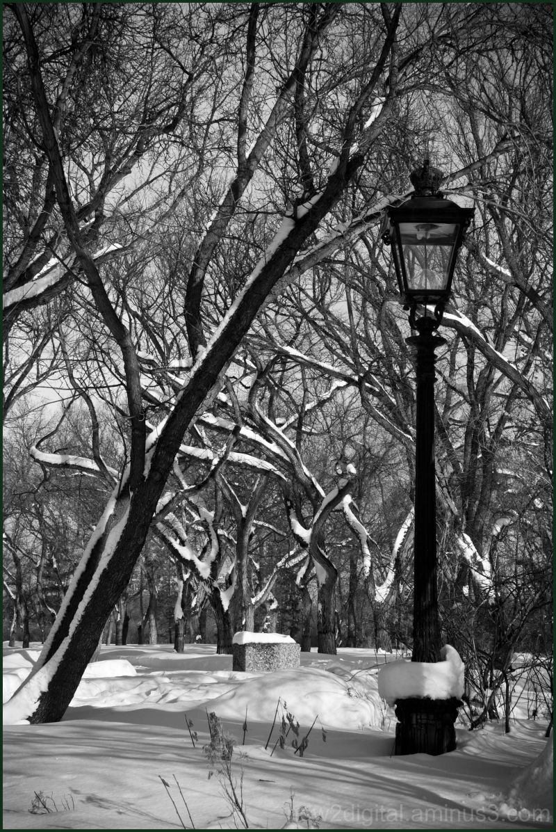 Classic Lamp Post