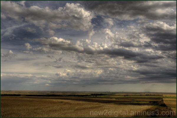 Wheat & Clouds 1/3