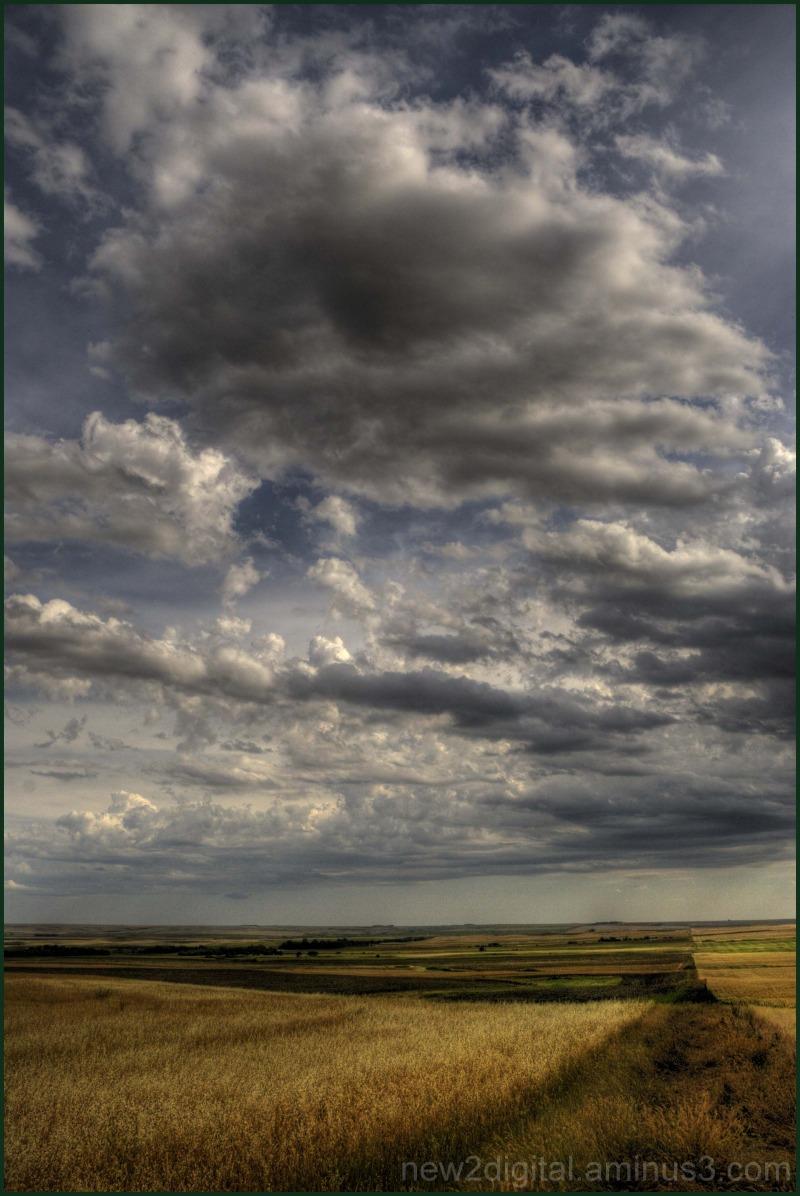 Wheat & Clouds 3/3