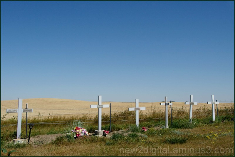Prairie Resting Place 1/3
