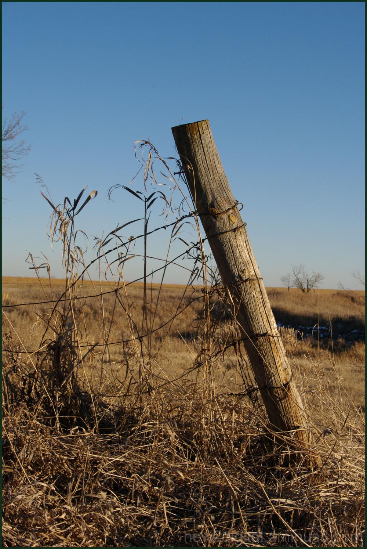 Fencepost 2/2