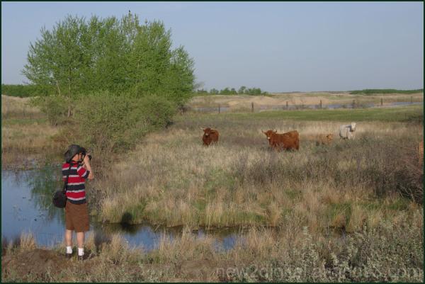 Photographers on the Farm 2/2