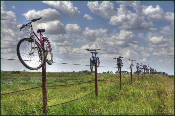 Bike Fence 1/2