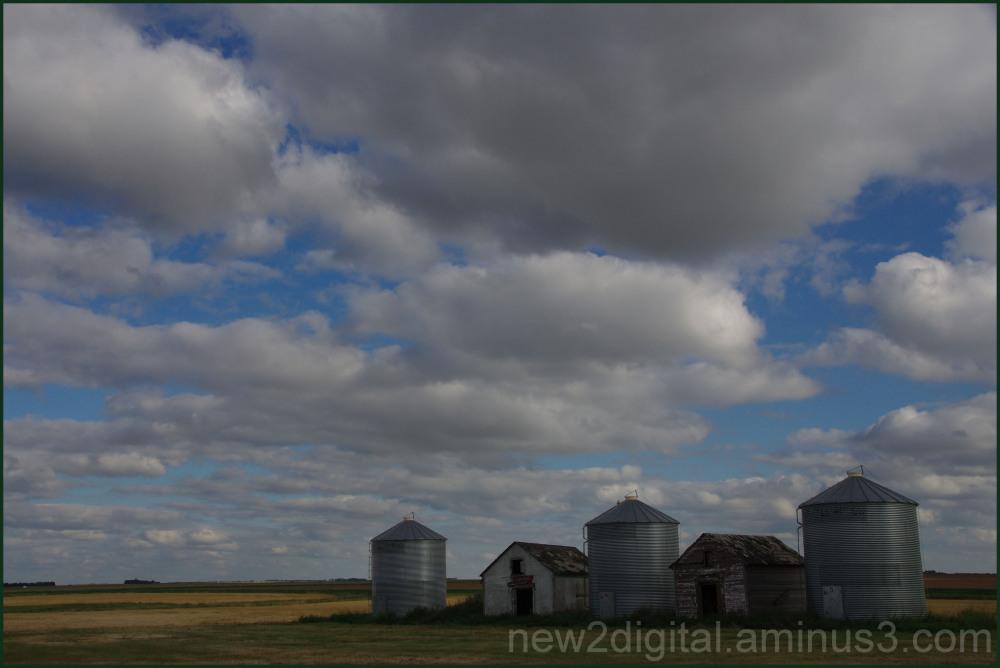 Little Bins on the Prairie