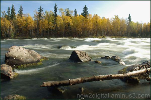 Otter Rapids
