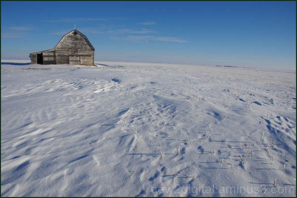 Little Barn on the Cold Prairie