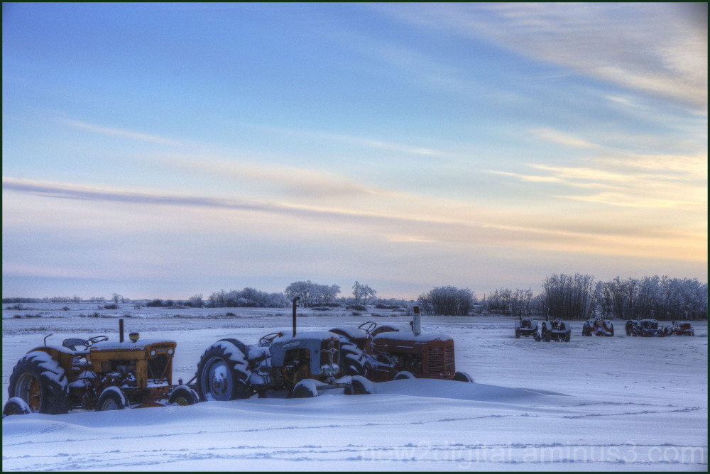 Early Morning Light at the Farm 1/2