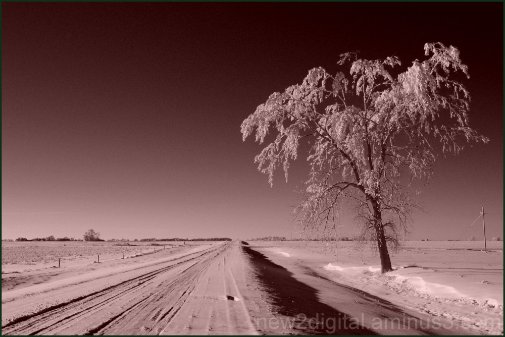 Long Cold Road