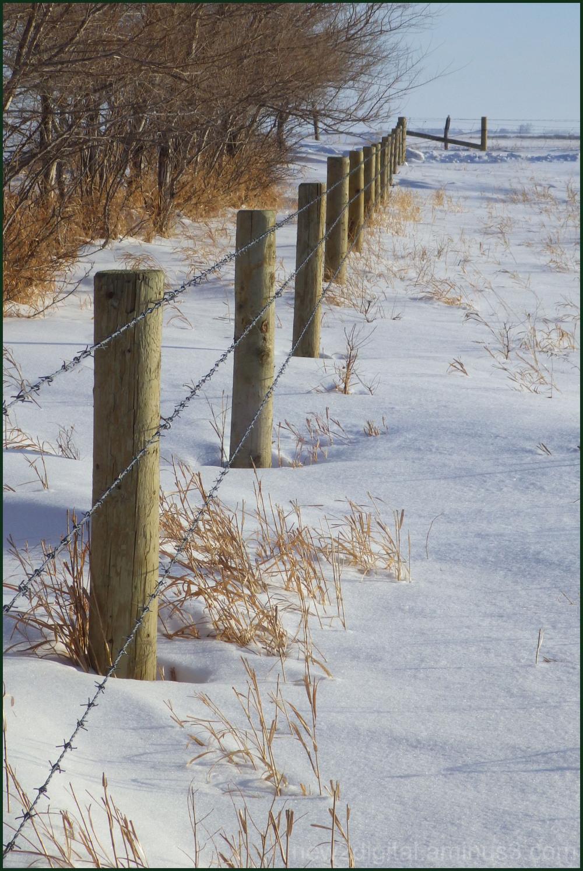 Snow Line Fence Line