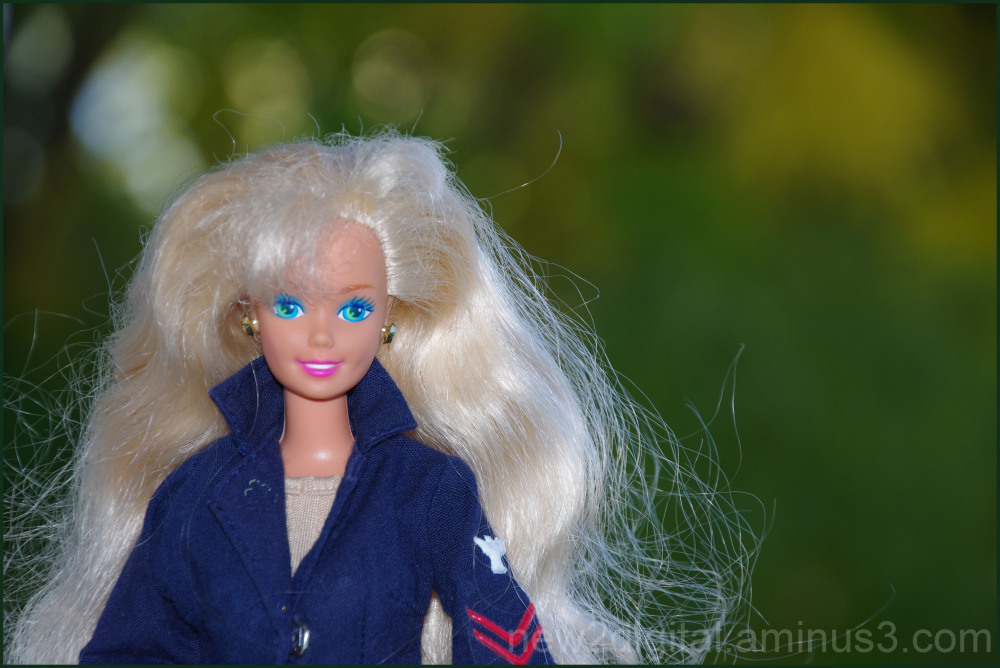 Barbie Enjoys Autumn