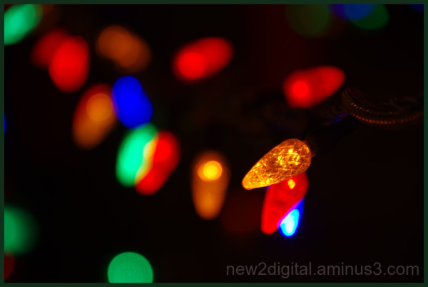 12 Days of Christmas Lights - Day 6