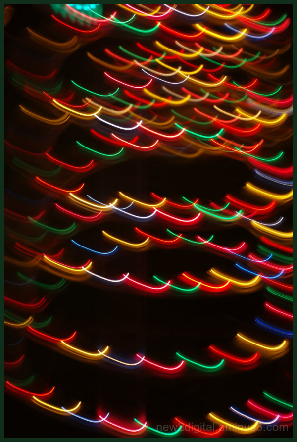 12 Days of Christmas Lights - Day 8