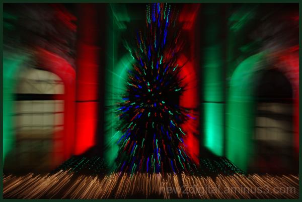 12 Days of Christmas Lights - Day 10