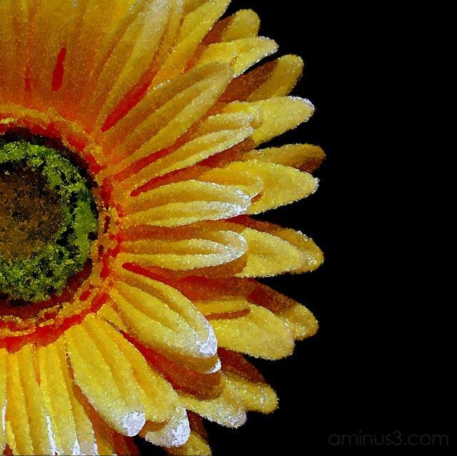 Yellow Silk Flower