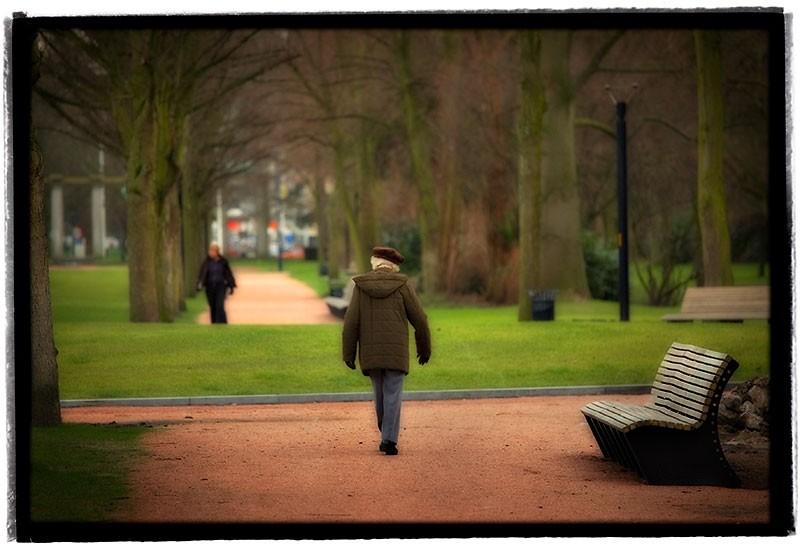 Gentse Koppen Zuidpark Gent Belgium