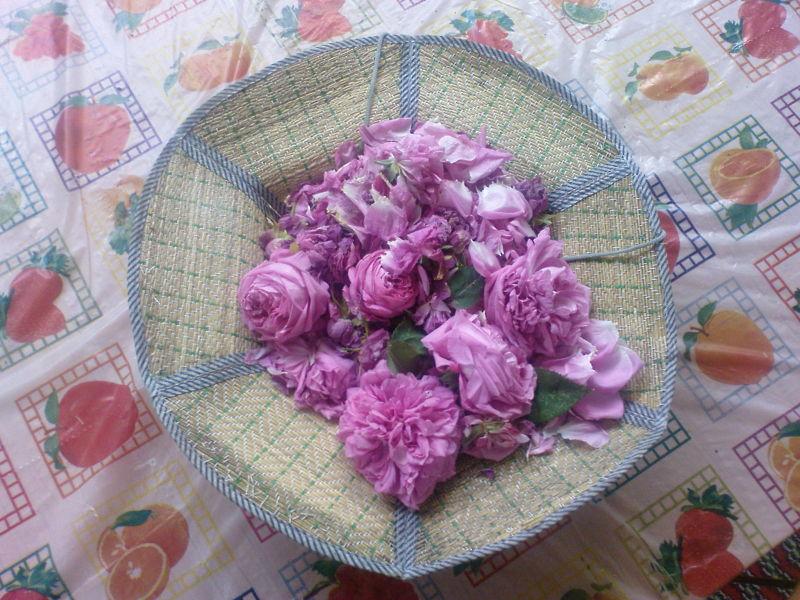 کلاهی پر از گل برای شما