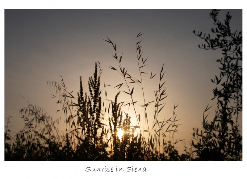 Sunrise in Siena!